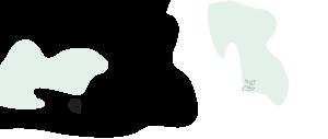 SignOnTheGo-esignature-back-green